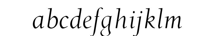 OPTIDeRoos-Italic Font LOWERCASE