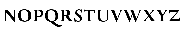 OPTIDeligne-Bold Font UPPERCASE