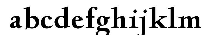 OPTIDeligne-Bold Font LOWERCASE