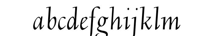 OPTIDeligne-Italic Font LOWERCASE