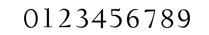 OPTIDeligne-Normal Font OTHER CHARS