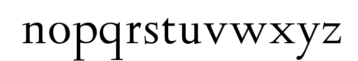 OPTIDeligne-Normal Font LOWERCASE