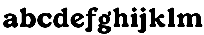 OPTIDutch-Oldstyle Font LOWERCASE