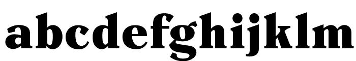 OPTIEinstein-Black Font LOWERCASE