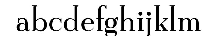 OPTIEisen-Medium Font LOWERCASE