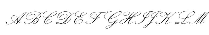 OPTIExcelsiorScript Font UPPERCASE