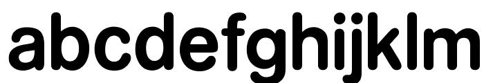 OPTIFormula-One Font LOWERCASE