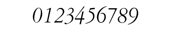 OPTIGaramondOld-Italic Font OTHER CHARS