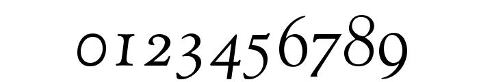 OPTIGoudy-Cursive Font OTHER CHARS