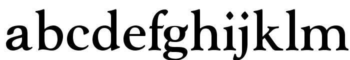 OPTIGoudy-MediumAgency Font LOWERCASE