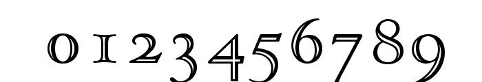 OPTIGoudyOpen Font OTHER CHARS