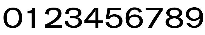 OPTIGurney-MediumExpanded Font OTHER CHARS