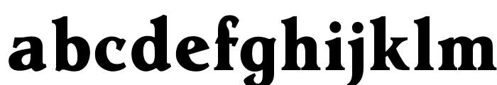 OPTIHollandseBoldAgency Font LOWERCASE