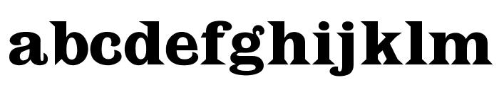 OPTILatin-Bold Font LOWERCASE
