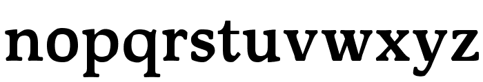 OPTIMagnaCarta-Bold Font LOWERCASE
