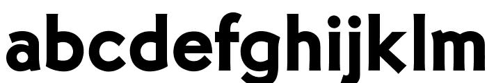 OPTIMalouGothicBold Font LOWERCASE