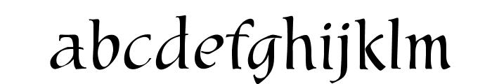 OPTIMarkusRoman Font LOWERCASE