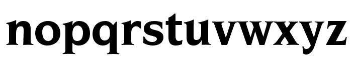 OPTINonoy-Bold Font LOWERCASE