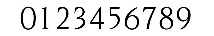 OPTINonoy-BookItalic Font OTHER CHARS