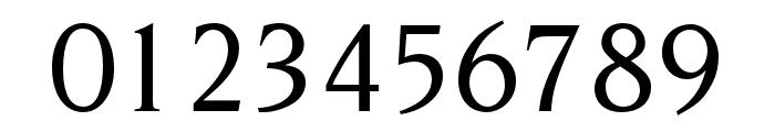OPTINonoy-MediumItalic Font OTHER CHARS