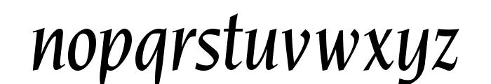 OPTINonoy-MediumItalic Font LOWERCASE