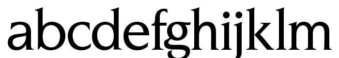 OPTINonoy-Medium Font LOWERCASE
