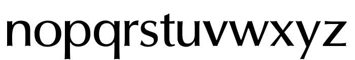 OPTIOptionMedium Font LOWERCASE