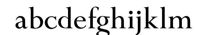OPTIPapong-Light Font LOWERCASE