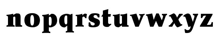 OPTIPathway-Black Font LOWERCASE