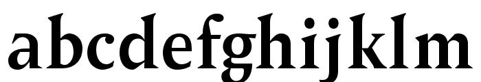 OPTIPegasus-Bold Font LOWERCASE
