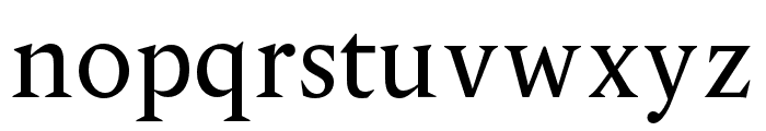 OPTIPegasus Font LOWERCASE