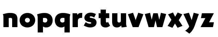 OPTISallyMae-ExtraBold Font LOWERCASE