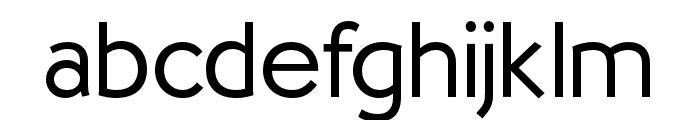 OPTISallyMae-Light Font LOWERCASE