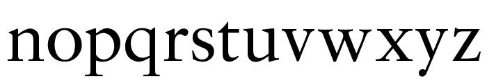 OPTISaroneRomanNormal Font LOWERCASE