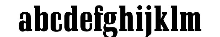 OPTISchadowAntiquaBoldCond Font LOWERCASE