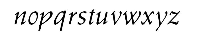 OPTISchneidler-Swash Font LOWERCASE