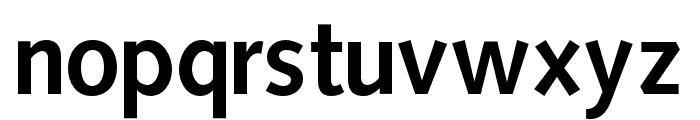 OPTISintax-Bold Font LOWERCASE