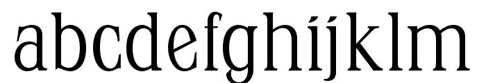 OPTIStevas-Light Font LOWERCASE