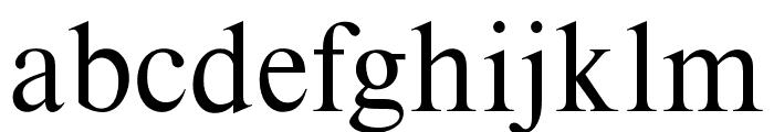 OPTITimes-Roman Font LOWERCASE