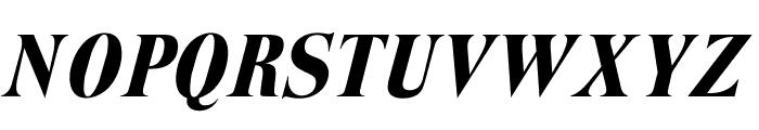 OPTITrimRoman-Italic Font UPPERCASE