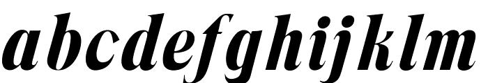 OPTITrimRoman-Italic Font LOWERCASE