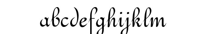OPTITypoC-Upright Font LOWERCASE