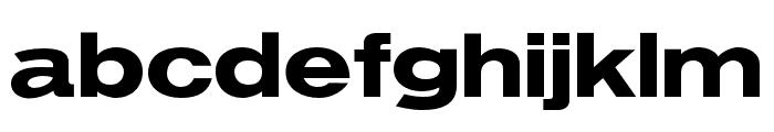 OPTIVenus-BoldExtended Font LOWERCASE
