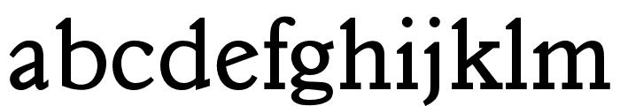 OPTIVeronese-Regular Font LOWERCASE