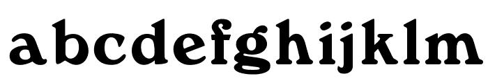 OPTIWindsor Font LOWERCASE