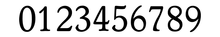 OPTIWorcester-RoundSL Font OTHER CHARS