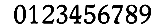 OPTIWorcester-RoundSLMed Font OTHER CHARS