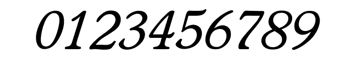 OPTIWorcesterRoundSLItalic Font OTHER CHARS