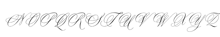OPTIYen-Script Font UPPERCASE