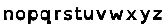 OpenDyslexic Bold Font LOWERCASE